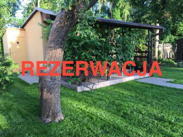 Działka ROD Pruszków