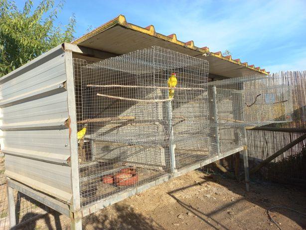 Gaiolas de Exterior para Aves