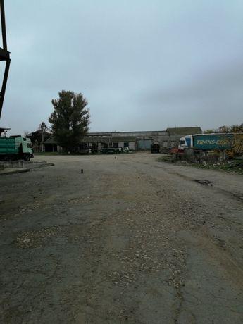 Продам базу в посёлке Приозёрное в 10 км от Херсона.
