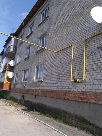 Продам 2-х комнатную квартиру пгт.Емильчино Житомирской обл.