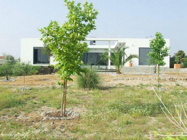 Quintinha de 8000 m2 com moradia T4 e pequeno pomar no Al...