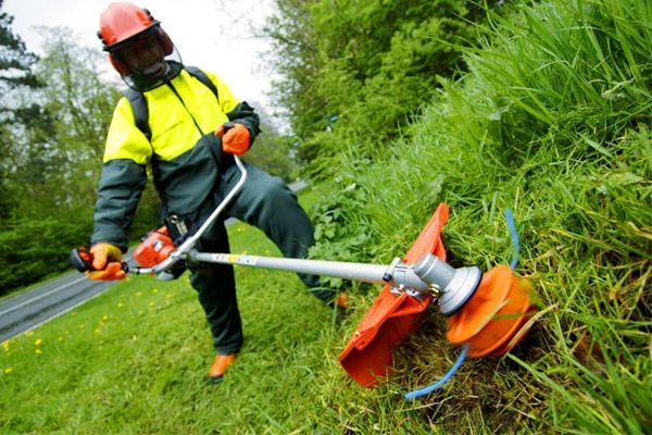 Предоставляем услуги по покосу травы и спилу деревьев