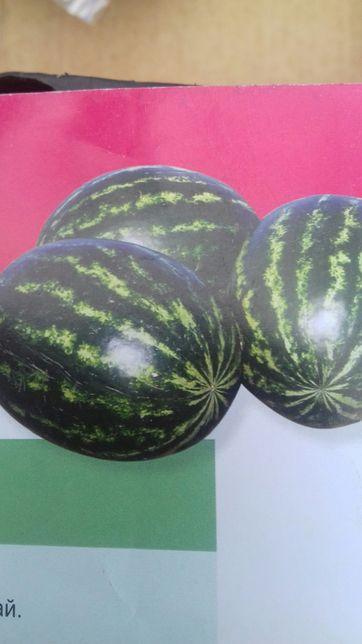 Продам семена арбуза Кримсон