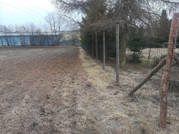 Ogrodzenie tymczasowe siatka leśna 150cm stemple Wolny termin