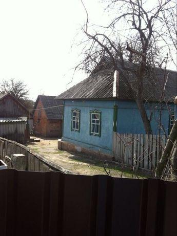 Продам будинок в с. Берестянка, Бородянський район