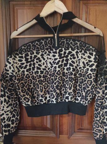 Блуза женская одежда