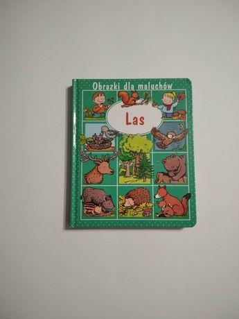 Las NOWA Świat w obrazkach książka edukacyjna poznawcza dla dzieci G40