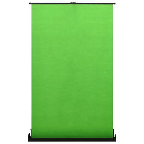 """vidaXL Fundo fotográfico verde 95"""" 4:3 51351"""