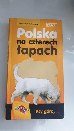 Polska na czterech łapach