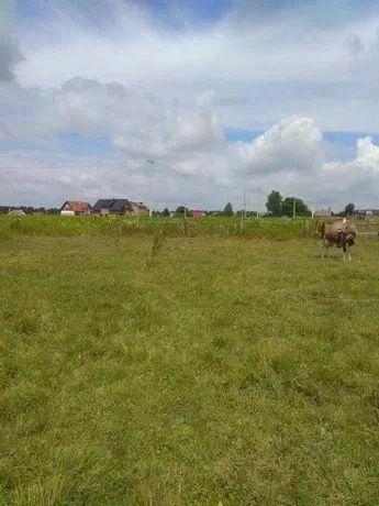 Продам приватизовану земельну ділянку смт Немирів