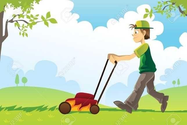Usługi ogrodnicze-pielęgnacja zieleni, wycinka drzew Siedlce i okolice
