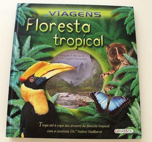 Viagens - Floresta Tropical