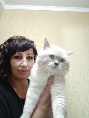 Приглашаем на вязку к коту