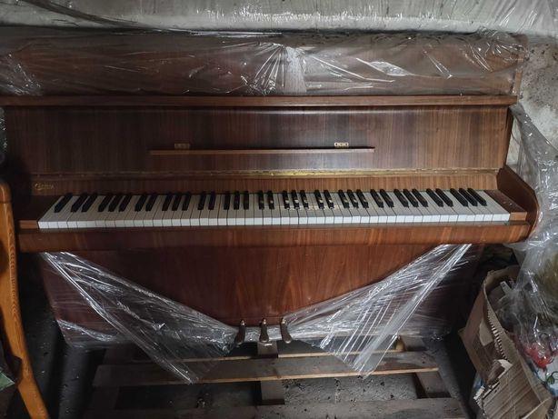 Pianino Calisia (dobry stan)