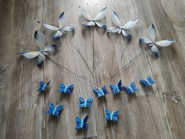 Motyle motylki chabrowe dekoracyjne