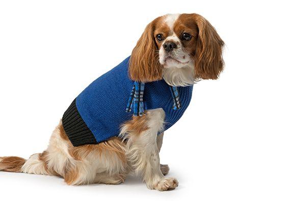 Eleganki dzianinowy sweterek z szalikiem