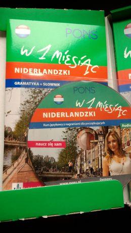 Niderlandzki w miesiąc, kurs języka niderlandzkiego