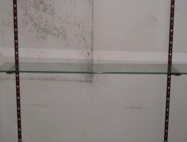 Expositor de prateleiras de parede