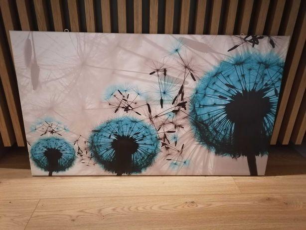 Obraz dekoracja na ścianę dmuchawce