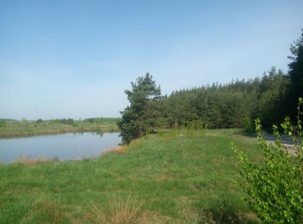 Земельна ділянка в селі Королівка Макарівський район Київська область