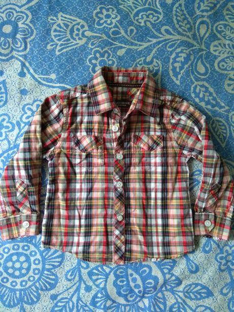 Рубашка, кофта, реглан