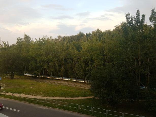 2 pok na Bażantowie od ZARAZ - blok z windą widok na las