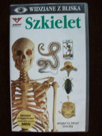 Szkielet kaseta VHS