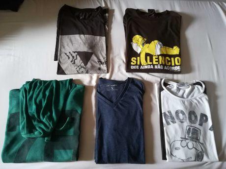 Várias T-shirt e Sweatshirt [tamanhos: L e M]