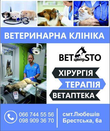 Ветеринарний центр СТО ) вет.клініка