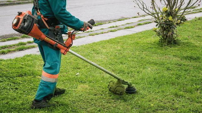 Jardins e manutenções