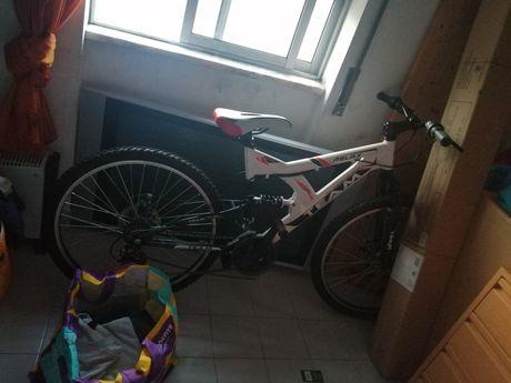 Bicicleta Team Relex. Disco travão frente e trás.