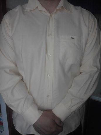 Koszula męska Lacoste