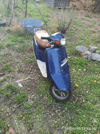 Скутер Honda takt IVY