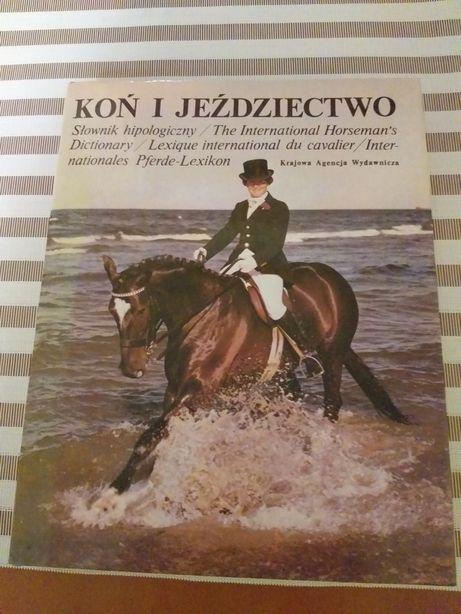 Słownik hipologiczny. Koń jeździectwo