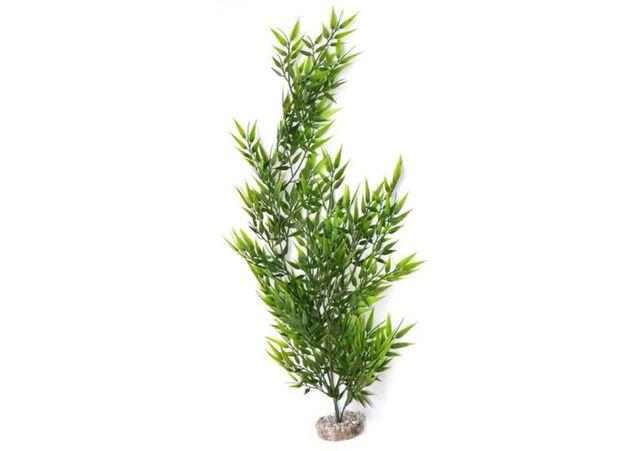 Planta Chute Bamboo Flexible Giant 55Cm