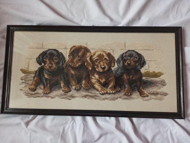 Obraz haft krzyżykowy - psy koty zwierzęta