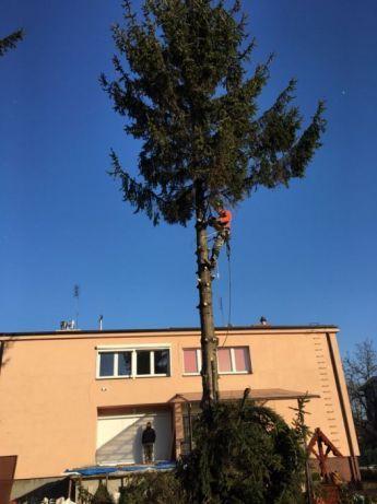 Wycinka drzew/lasów/rębak/mulczer/koparka/CAŁA WARSZAWA/TANIO