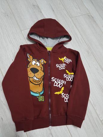 Bordowa bluza z kapturem Scooby Doo 122 128