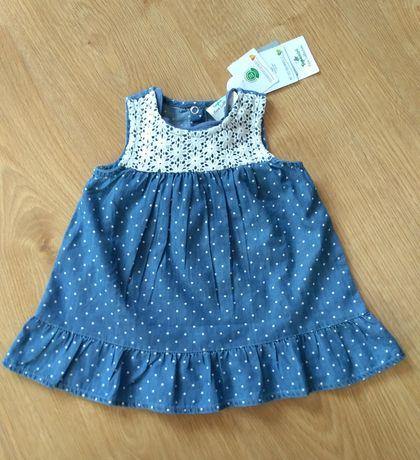 Sukienka plus body, komplet, rozmiar 68 NOWE
