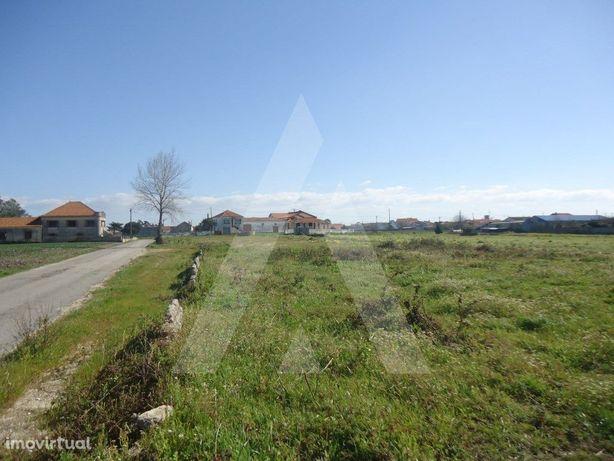 Terreno para construção de 11 moradias