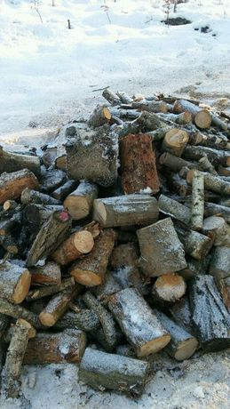 Drzewo pocięte dąb grab buk sosna, również workowane