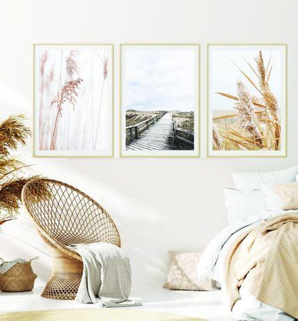 Zestaw 3 Obrazy Plakaty Modny Obraz Boho Trzcina Natura