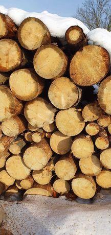 Drewno opałowe suche lub mokre