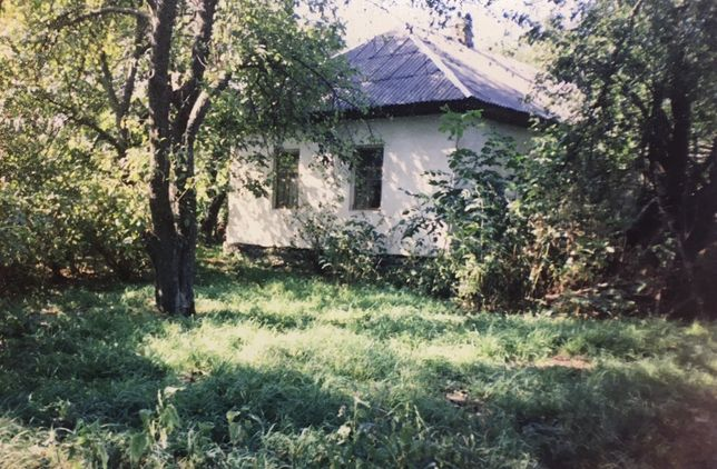 Будинок у селі Требухів