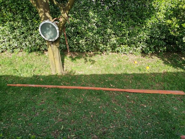 Remos de Baleeira anos 60 Pinho Flandres 3,8m