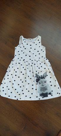 Sukienka H&M 140 z króliczkiem