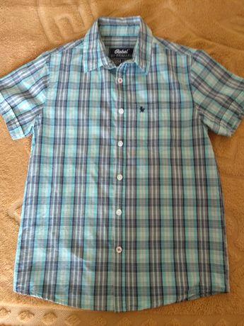 Рубашка Primark, р 146