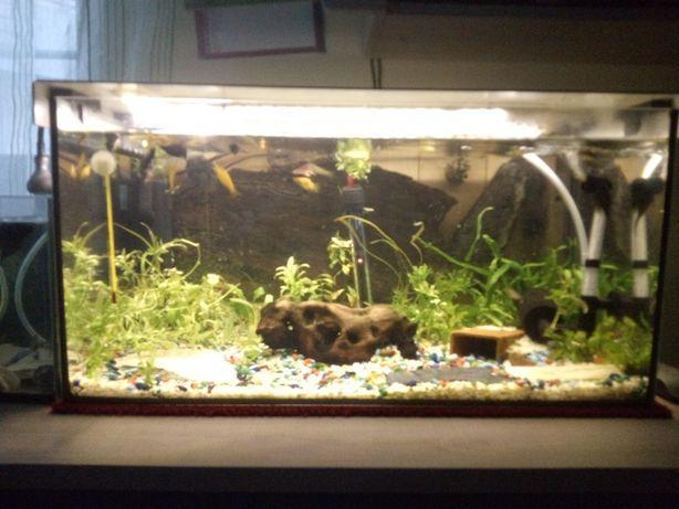 pokrywka z oświetleniem do akwarium 60l
