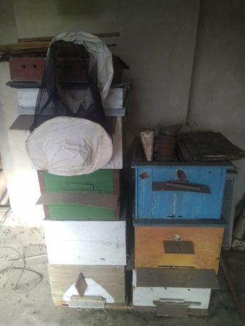 Улики для пчёл
