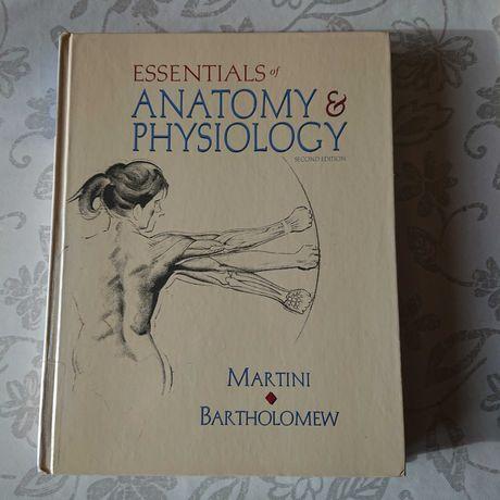 Podręcznik anatomii